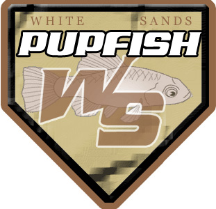 White-Sands-PupFish